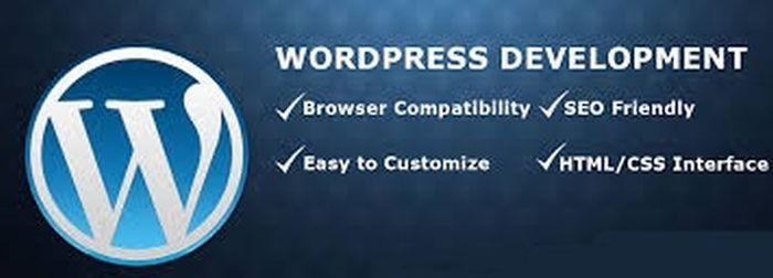 Advantage Of Wordpress Web Development