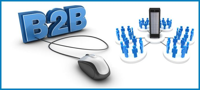 B2B Portal Development Company in Delhi