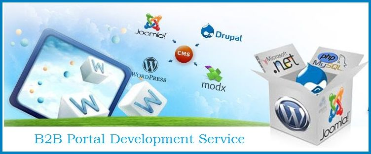 B2B Portal Development Services in India