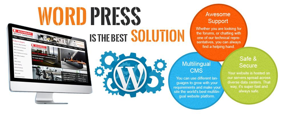 Wordpress Web Development Services In Delhi India