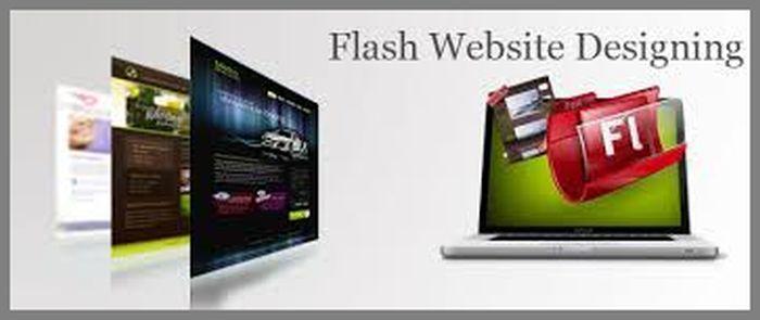 Flash Website Designing Company in Delhi