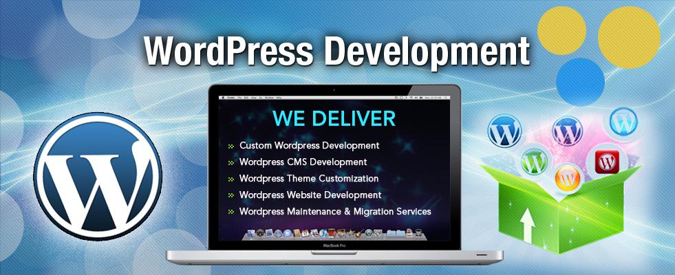 Wordpress Website Development Company In Delhi India