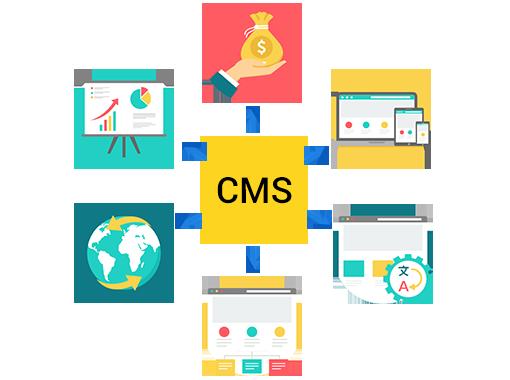 CMS Web Development Services Delhi | CMS Website Development